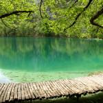 Letná krajina pri Plitvických jazerách