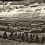 Letná krajina nad obcou Jasenovo